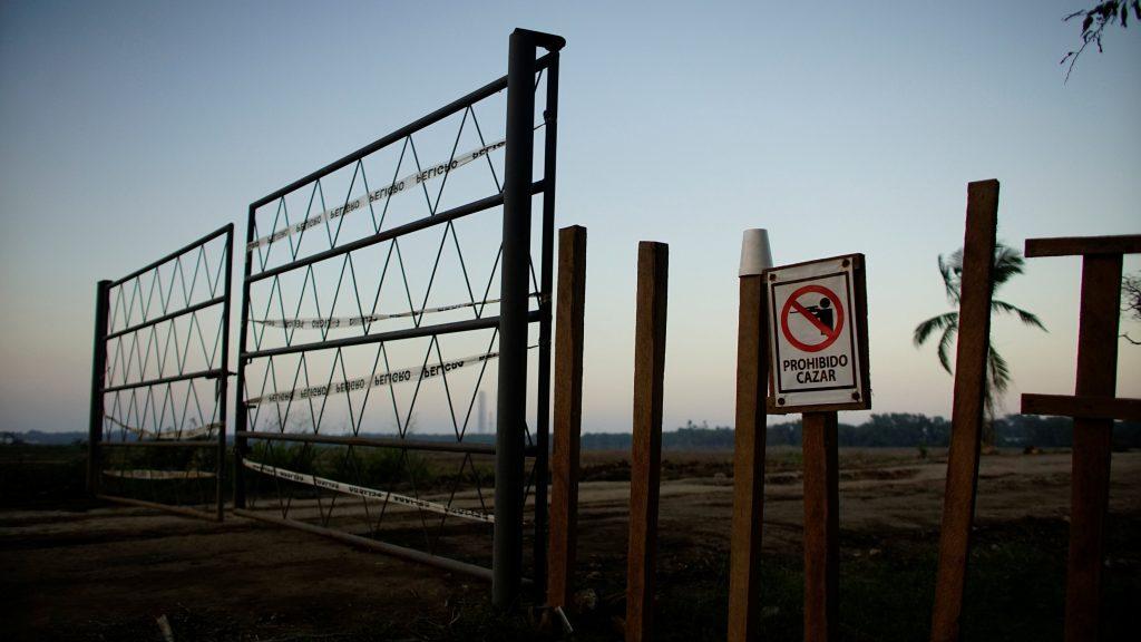 Especies amenazadas complican refinería propuesta por AMLO