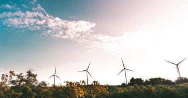 Empresas que apuestan por energía renovable