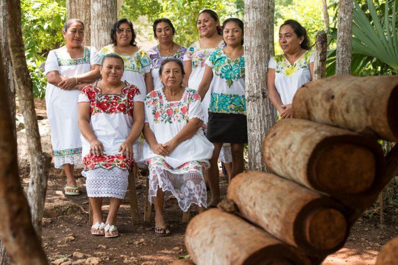 Mujeres mayas salvan a las abejas y se empoderan