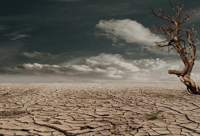 Cómo afecta el cambio climático a las grandes empresas - Coca Cola