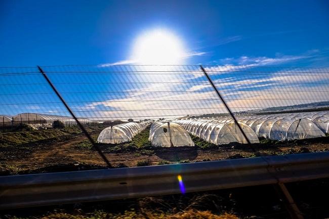 Futuro económico de la energía solar en América Latina