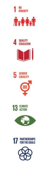 5 pasos para transformar riesgos en oportunidades con los ODS - establecer objetivos