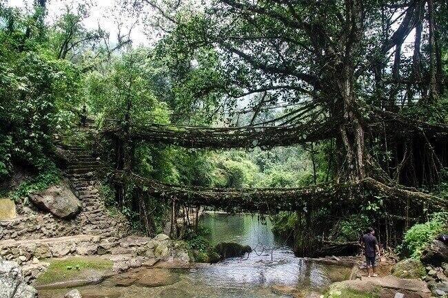 Arquitectura de la resiliencia - puente en Indonesia