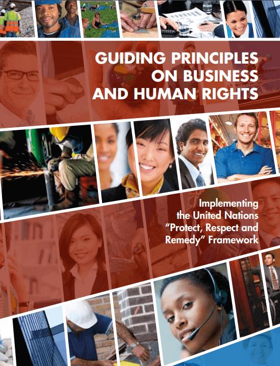 El respaldo del Consejo de Derechos Humanos de la ONU
