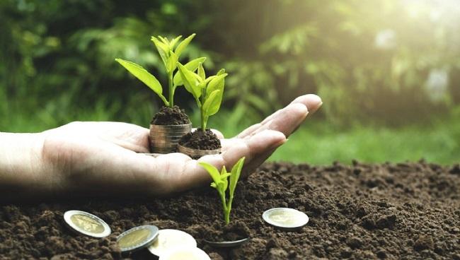 ¿Por qué la tendencia de la sustentabilidad en el centro del negocio se ha acelerado tan rápidamente?