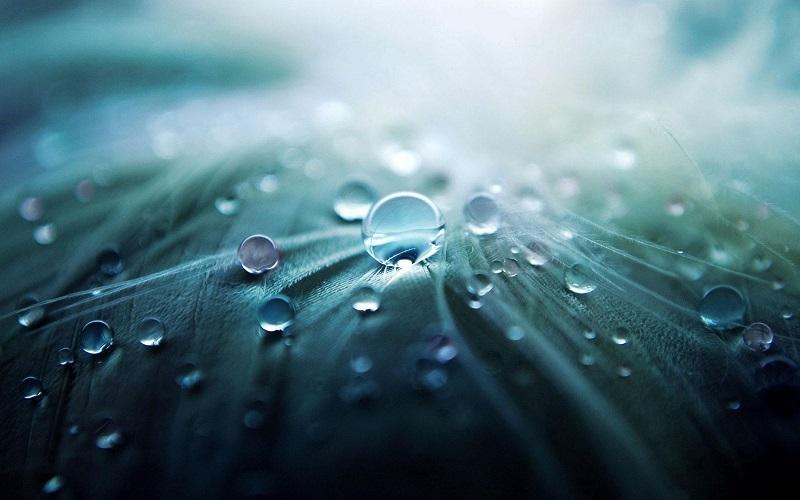 Agua y equidad, una mancuerna indisoluble