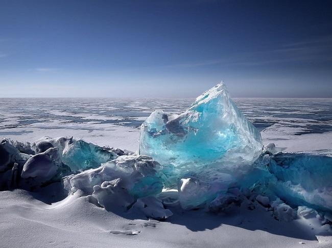 El sector privado y el cambio climático