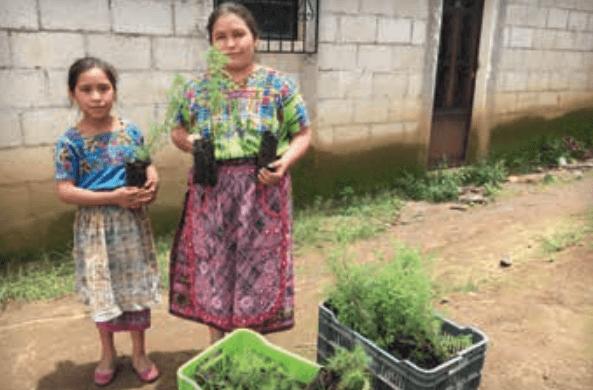 Claridad, consistencia y compromiso en el reporte integrado de Coca-Cola FEMSA 2018 - comunidades