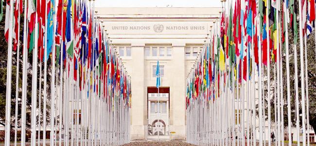 Estadísticas sobre empresas integrando los derechos humanos en su estrategia