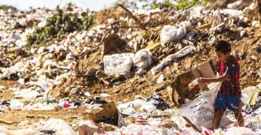 El futuro de la sustentabilidad: un reporte