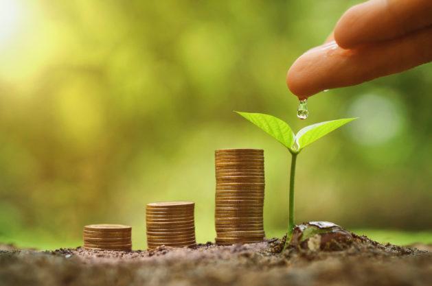 Estándares internacionales de RSE y reportes de sustentabilidad
