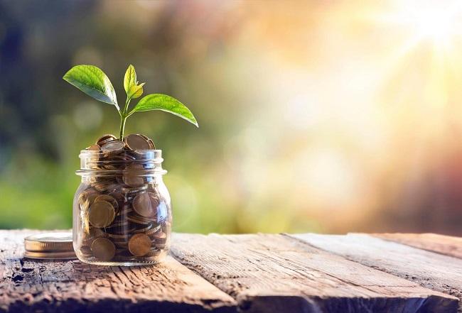 Estudio para fusionar rentabilidad y propósito en las empresas
