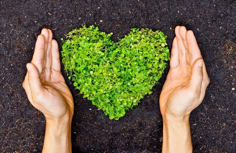 7 pasos para acelerar la sustentabilidad de tu negocio