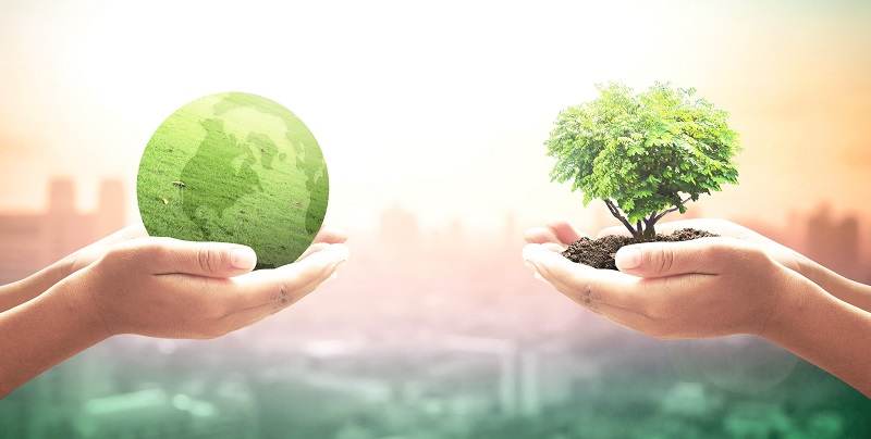 Sostenibilidad, nuevo estándar para negocios exitosos Estudio global