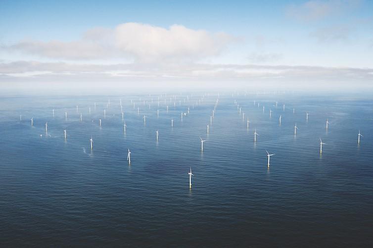 Historia de sustentabilidad: la compañía danesa que volvió a nacer con energía verde