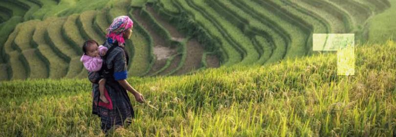Mejores prácticas de negocios en la aplicación de los ODS