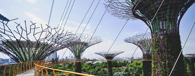 ¿Por qué mi compañía debe interesarse en la sustentabilidad corporativa? 3 pilares de sustentabilidad - ambiental