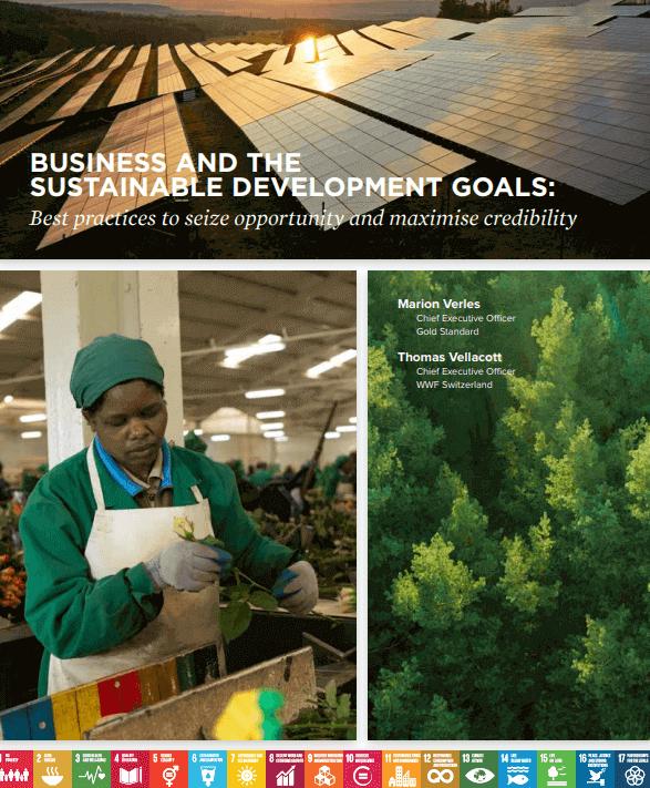 Mejores prácticas de negocios en la aplicación de los ODS - reporte