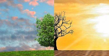 Guía para inversionistas ante el cambio climático