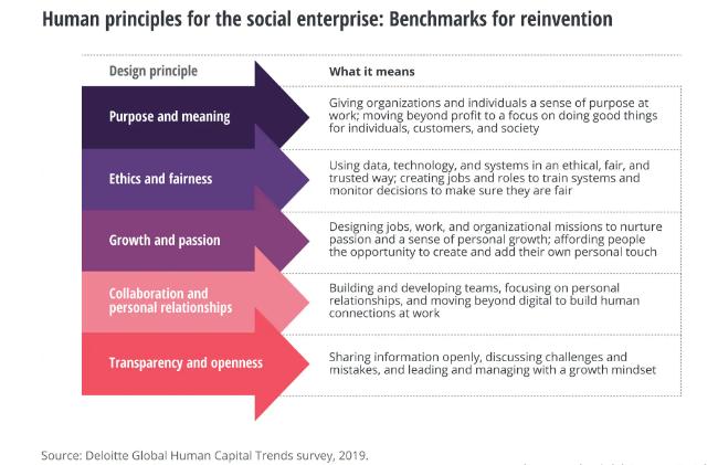 Principios para manejar empresa social