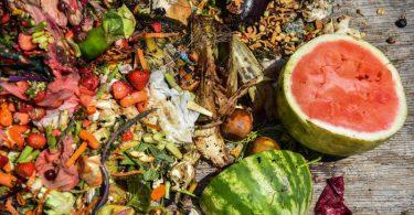 Solución tecnológica al desperdicio de alimentos
