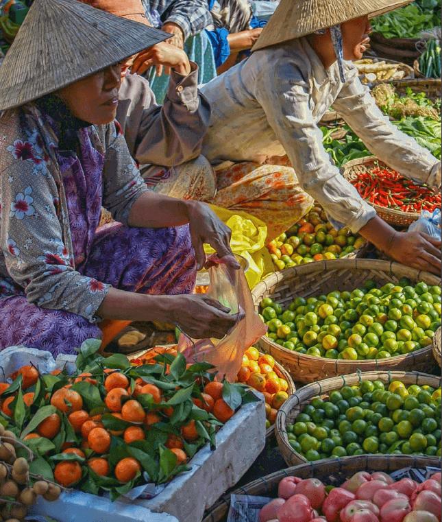 Reducir las emisiones de gases de efecto invernadero de la producción agrícola uno de los etapas del futuro alimentario sostenible