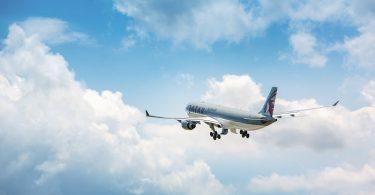 Cómo volar de manera sustentable