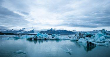 Lo que 1000 CEOs realmente piensan del cambio climático