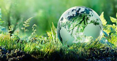 Ser sustentable no solo es responsable, es una visión de negocio a largo plazo: HP