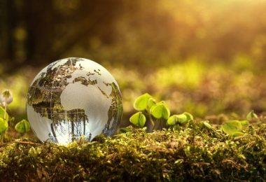 Por qué las empresas fallan en ser verdaderamente sostenibles