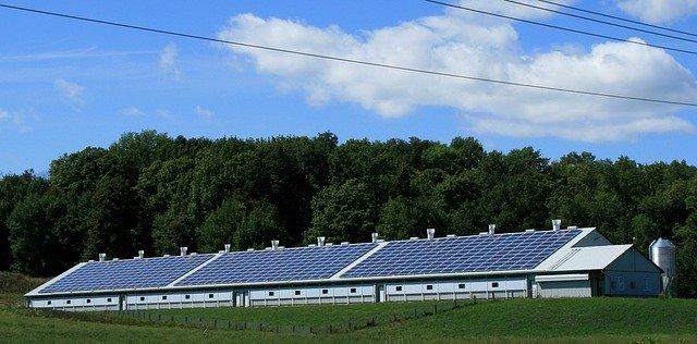Celdas solares. Los negocios verdes ya son más rentables, asegura estudio