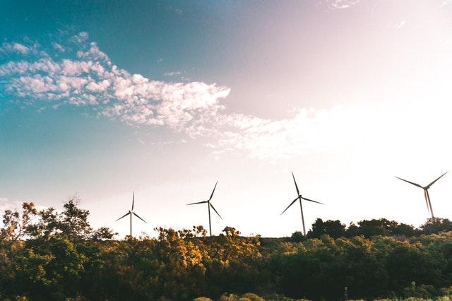 turbinas eólicas. 7 tips pata que tu organización sea cero neto