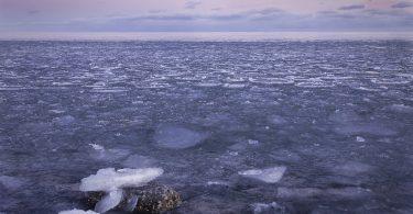 Discurso pesimista ante la crisis climática