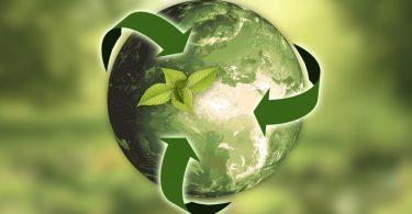 Pfizer completa bono de sostenibilidad de $ 1.25 mil millones por impacto social y ambiental