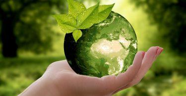 Planeta verde. La Hora de la Tierra rompió récord de participación en el mundo