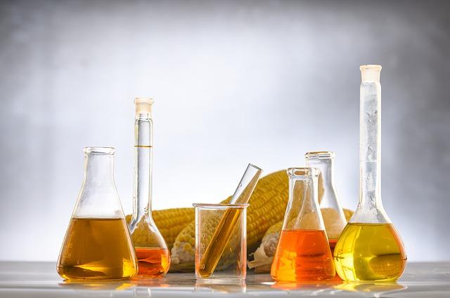 Química.Crece demanda de aceite de palma y los ecosistemas sufren