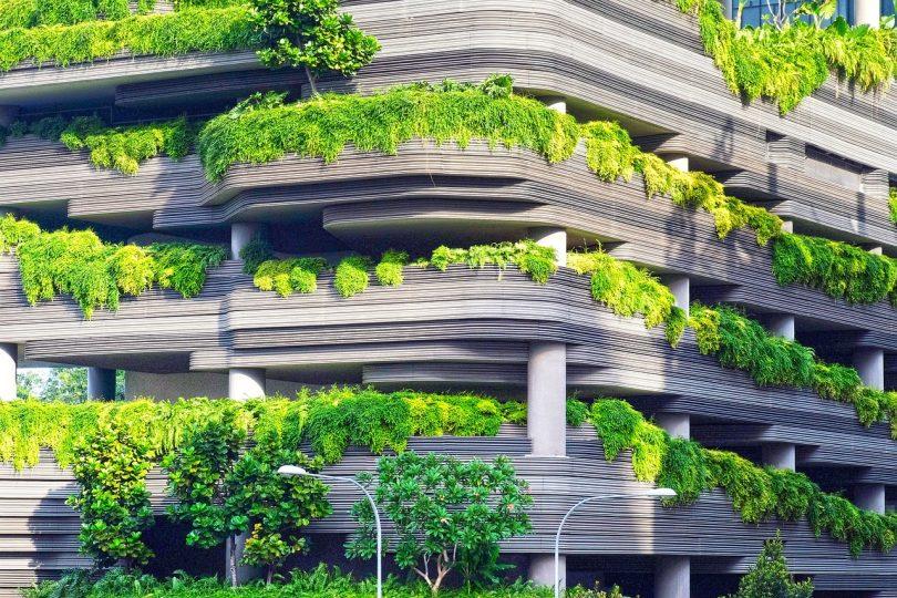 Jardín. ¿Y si plantas un jardín casero durante el confinamiento?