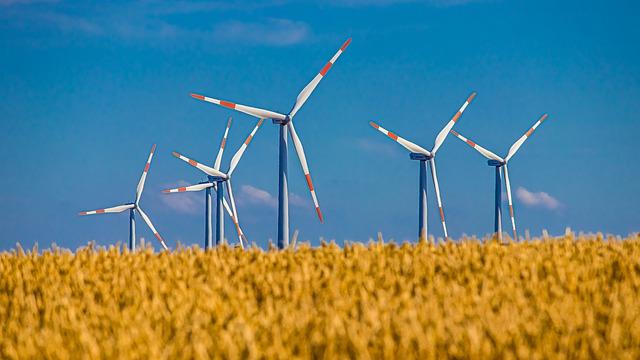 Energía eólica. BlackRock, el carbón no basta, la biomasa es también urgente