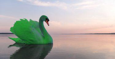 John Elkington habla de cisnes verdes y la inevitabilidad de una recuperación verde