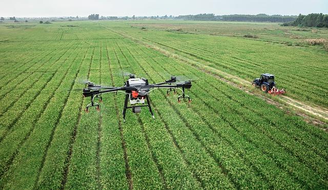 Dron. Para plantar un trillón de árboles... se usarían drones