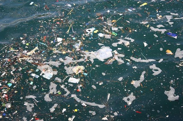 Basura.Los plásticos llegan a la Antártica