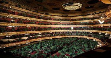 """Plantas. Barcelona regresa a la """"normalidad"""" con un concierto para... ¿plantas?"""