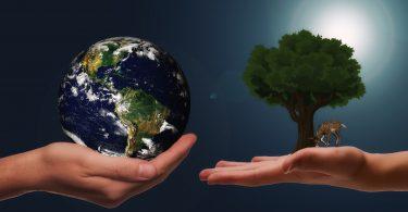 La sustentabilidad está cambiando todo el panorama empresarial: estudio