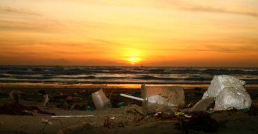 WWF enumera 4 tácticas que las corporaciones globales pueden usar para combatir la contaminación por plásticos