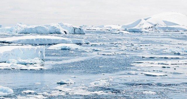 antartica. ¿Pueden de verdad existir líderes verdes en medio de un sistema capitalista?