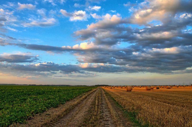 Agricultores temen más el impacto del cambio climático que el de la pandemia