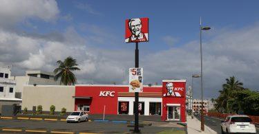 KFC admite que un tercio de sus pollos sufre inflamación dolorosa