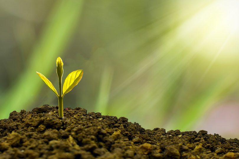 Sucesos del 2020 desatan la demanda por objetivos ESG