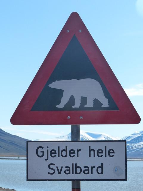 Aviso. ¿Se acerca el fin de los osos polares?