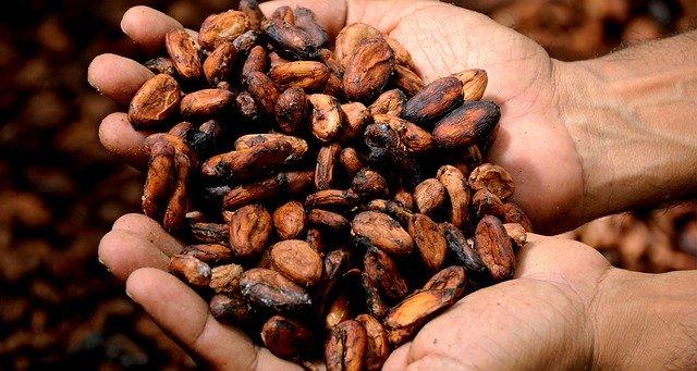 ejemplos de chocolate sostenible